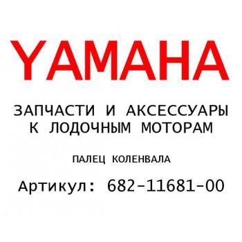 ПАЛЕЦ КОЛЕНВАЛА